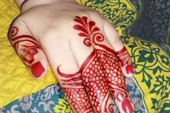 Indian Mehndi Designs-10